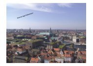 Green Roofs in Copenhagen - Byg-Erfa