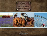 2012 Annual Report - TMLT