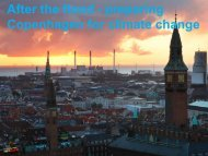 After the flood - preparing Copenhagen for climate change