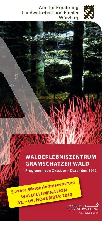 Dezember 2012 - Treffpunkt Wald