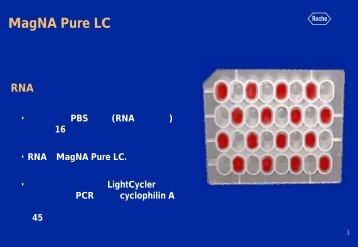 (末梢血単核球からの抽出RNA実験データ)(PDF)