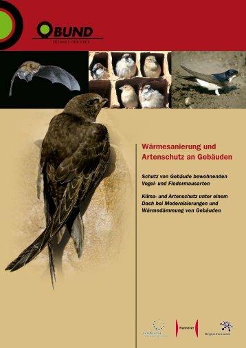 Wärmesanierung und Artenschutz an Gebäuden - proKlima Hannover