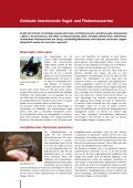Wärmesanierung und Artenschutz an Gebäuden - proKlima Hannover - Seite 4