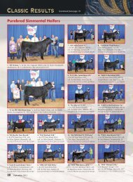 National Classic Show Results 2012 - American Simmental ...