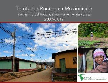Informe Final Programa Dinámicas Territoriales Rurales ... - Rimisp