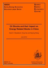 Oil Shocks and their Impact on Energy Related Stocks in China