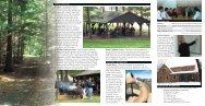 WT Rental Brochure FINAL.indd - Winding Trails
