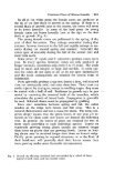 Open as a single document - Arnoldia - Page 7