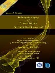 Radiological Imaging of Peripheral Nerves - Medizinische ...