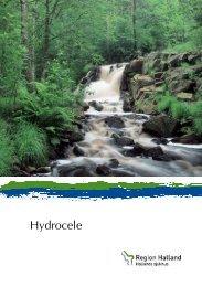 Hydrocele - Region Halland