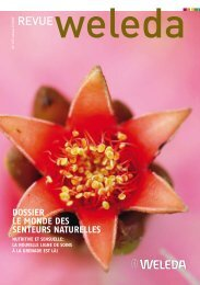 Revue Weleda 147, St. Jean 2009 PDF-Download