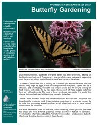 Butterfly Gardening - The Xerces Society