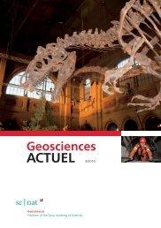 Geoscience ACTUEL 3/2010 - Platform Geosciences - SCNAT