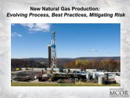 Shale Gas - Tom Murphy, Penn State Marcellus Center for Outreach ...