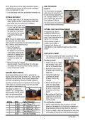 Dual Mode Precision Plunge Router - Triton Tools - Page 7