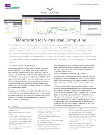 Monitoring for Virtualized Computing - Indes.com