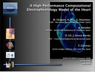 A High Performance Computational Electrophysiology Model of the ...