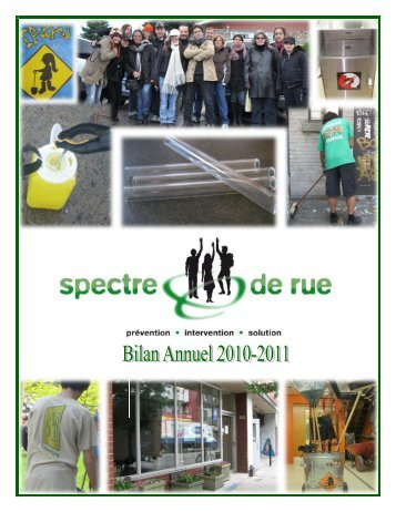 Bilan activit s 2010 fr final version 14 dec khid for Dgcl interieur gouv fr