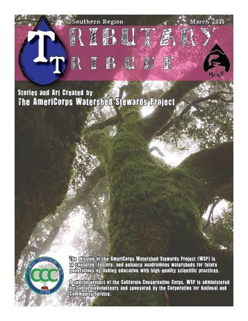 Tributary Tribune - California Conservation Corps
