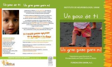 fundación unam, ac - Instituto de Neurobiología