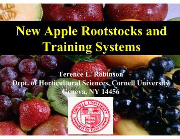 Pruning and Training Systems