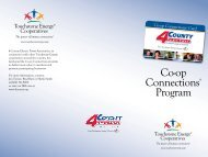 Business Connection Brochure - 4-County Electric Power Association