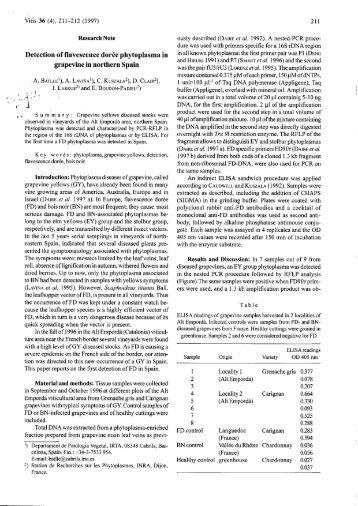 Detection of flavescence doree phytoplasma in grapevine ... - Vitis-vea