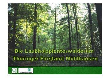 ansehen und herunterladen - Buchenzentrum Mühlhausen e. V.