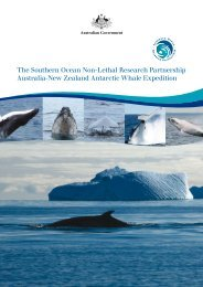 Antarctic Whale Expedition 2010 - Australian Marine Mammal Centre