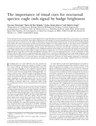 eagle owls signal by badge brightness - Vincenzo Penteriani