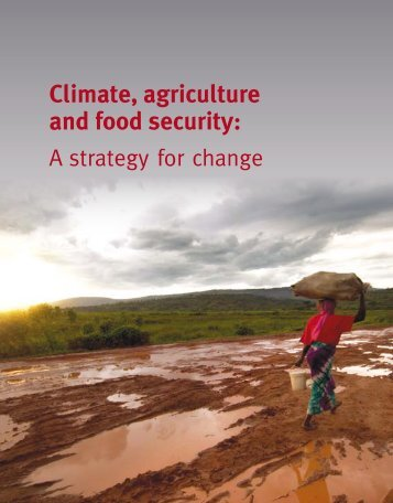 Climate, agriculture and food security: A strategy for - CCAFS - cgiar