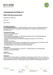 0898_224 Brunnenschaum_S24 - RECA NORM
