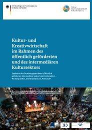 Kultur- und Kreativwirtschaft im Rahmen des öffentlich geförderten ...