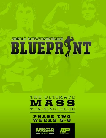 arnoldblueprint_mass_phasetwo-v1.1