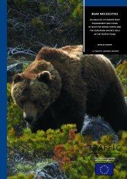 TRAFFIC bear report.pdf - Medvede SK