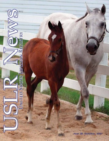 Summer 2007 - United States Lipizzan Federation