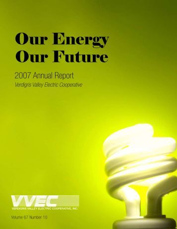 Our energy future essay