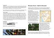 Musema Finest – Kaffe fra Burundi - Risteriet