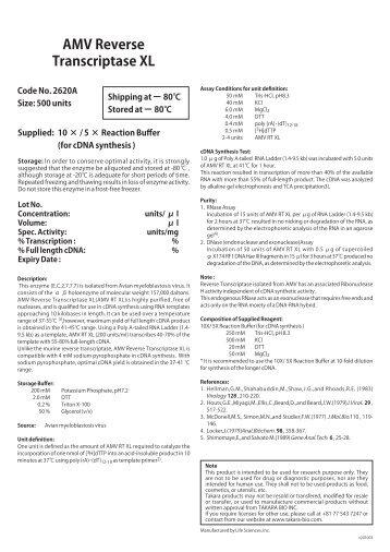 AMV Reverse Transcriptase XL