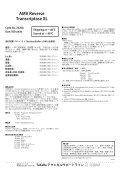 AMV Reverse Transcriptase XL - Page 2