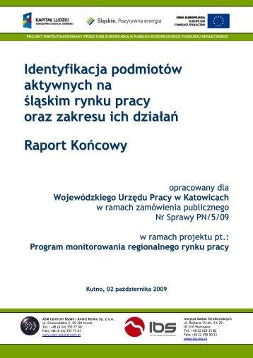 Identyfikacja podmiotów aktywnych na śląskim rynku pracy oraz ...