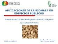 aplicaciones de la biomasa en edificios públicos - Altercexa