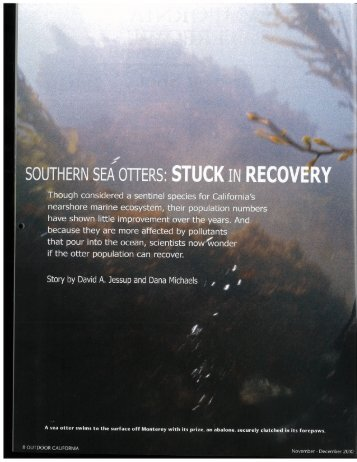 California's Southern Sea Otters, stuck in recovery