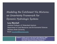 Modeling the Catchment Via Mixtures - Department of Physics