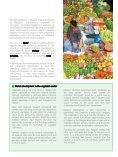 Brochure - Katalyst - Page 7
