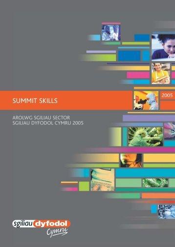 FSW Sector report Summit Skills Welsh - Arsyllfa Dysgu a Sgiliau ...