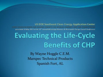 Evaluating the Life-Cycle Benefits of CHP