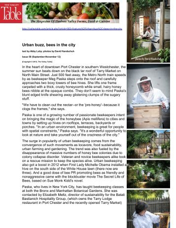 Urban buzz, bees in the city (263KB PDF) - Abby Luby