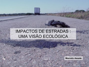 impactos de estradas - Departamento de Ecologia