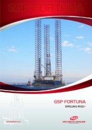 Download GSP FORTUNA